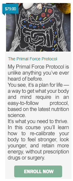 Primal Protocol Course